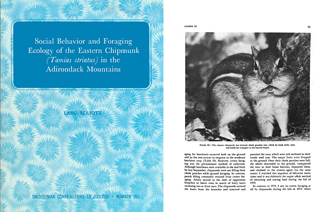 photo of Lang's chipmunk monograph
