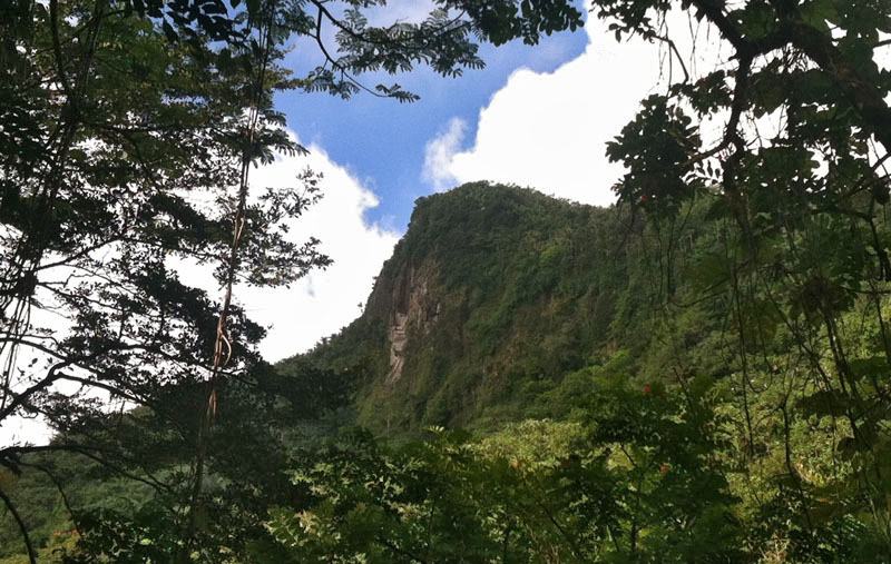 El Yunque Landscape Photo