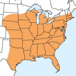 Range Map for Northern Mole Cricket