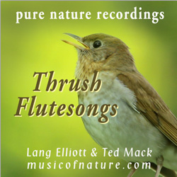photo of cover of Thrush Flutesongs