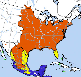 Range map for the Orchard Oriole