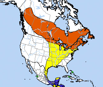 Range map for Yellow-bellied Flycatcher